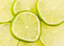 Lime slices abstract background Stock Images