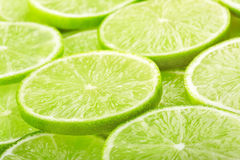 Lime slices background Royalty Free Stock Image