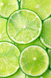Lime slices background Royalty Free Stock Photos