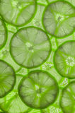 Lime Slices Background Royalty Free Stock Images
