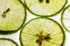 Lime slices floating in soda water Stock Image