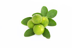 Lime. With slices isolated on white Stock Images