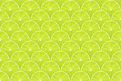 Lime slices pattern. Detailed background made from many lime slices, seamless pattern Stock Images