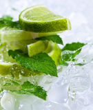 Lime slices and peppermint Royalty Free Stock Photography