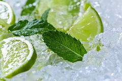 Lime slices and peppermint Stock Photography