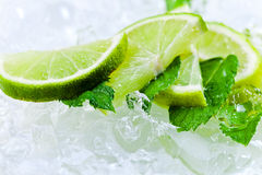 Lime slices and peppermint Royalty Free Stock Photos