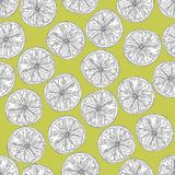 Lime Slices Seamless Pattern In Black And White On Yellow Green Background Stock Images