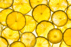 Lime slices Stock Photo