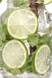 Lime soda mint rosemary fresh drink summer isolated Royalty Free Stock Images