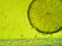 Lime in soda water on a background Royalty Free Stock Photo