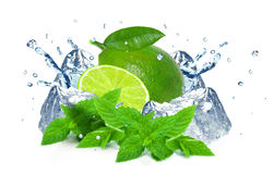 Lime splash and ice Stock Photo