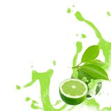 Lime splash Royalty Free Stock Photography