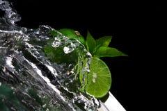 Lime splashing Royalty Free Stock Images