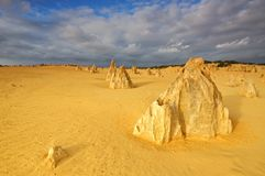 Lime stones at Pinnacles Desert Stock Image
