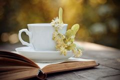Lime tea in a white mug and the open book on a table. royalty free stock photos