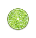 Lime with Transparent Droplets Stock Photo