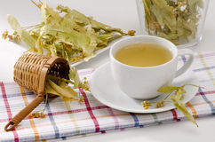 Lime Tree Herbal Tea Stock Photo