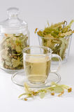 Lime Tree Herbal Tea Royalty Free Stock Photography