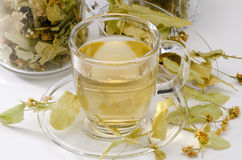 Lime Tree Herbal Tea Stock Photography