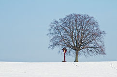 Lime tree with snow and cross Stock Images