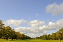 Lime Avenue and White Lodge, Bushy Park, Middlesex, UK royalty free stock photo