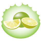 Lime vector Stock Images