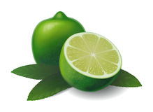 Lime Royalty Free Stock Photo