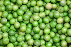Lime. Wallpaper green lime sour Stock Photo