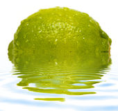 Lime with water drops and reflection on water Stock Images