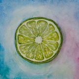 Lime watercolor Royalty Free Stock Photography