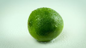 Lime with waterdrops