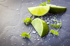 Lime Wedges with Sea Salt and Micro Herbs over Slate Stock Photography