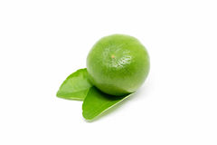 Lime  on white background Royalty Free Stock Photo