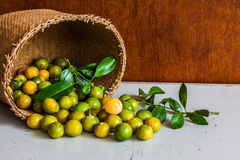 Lime in wicker basket Stock Images