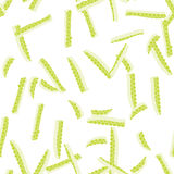 Lime Zest Seamless Pattern Royalty Free Stock Photo