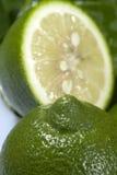 Lime2 immagine stock libera da diritti