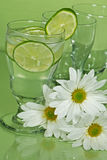 Limeade Stock Images