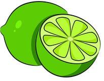 limefrukt royaltyfri illustrationer