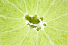 Limefrukt 3 Royaltyfria Bilder
