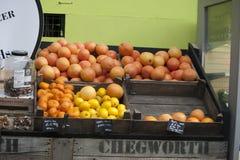 Limefrukt apelsin, tagerine, grapefrukt i en vide- ask, som hänger på väggen som är till salu på marknaden Royaltyfri Bild