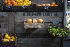 Limefrukt apelsin, tagerine, grapefrukt i en vide- ask, som hänger på väggen som är till salu på marknaden Royaltyfria Foton