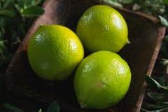 Limefrukt bär frukt i en bunke med örter arkivfoton