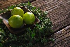 Limefrukt bär frukt i en bunke med örter arkivbilder