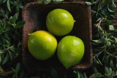 Limefrukt bär frukt i en bunke med örter arkivbild