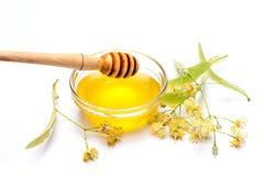 Limefrukt blommar med honung arkivbilder
