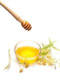 Limefrukt blommar med honung royaltyfri foto