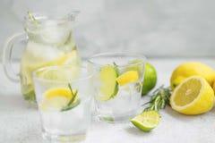 Limefrukt citron, rosmarinlemonad med iskuber, förnyande sommardrink arkivfoto