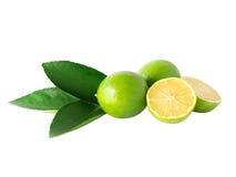 Limefrukt- eller citronisolat Arkivfoto