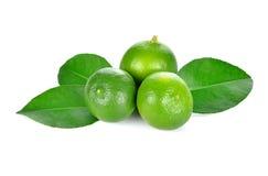limefrukt frukt med en halva royaltyfri fotografi