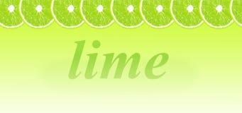 Limefrukt halverar bakgrund med utrymme för text på en vit Arkivbild